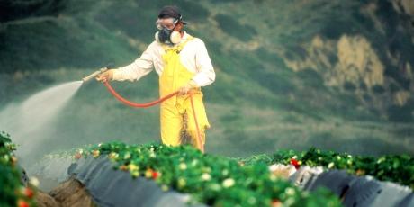 Deutschland: Unsere Stimmen gegen Monsanto