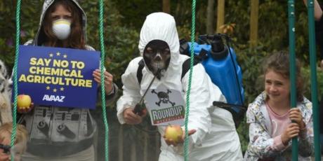 Europe: Ban glyphosate now!