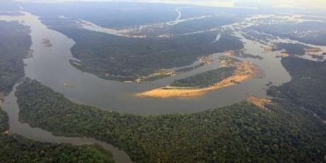 Brazil: stop mining in the Amazon!
