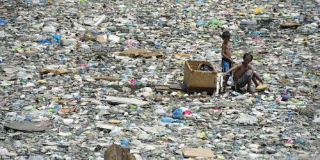 Kein Plastik im Paradies