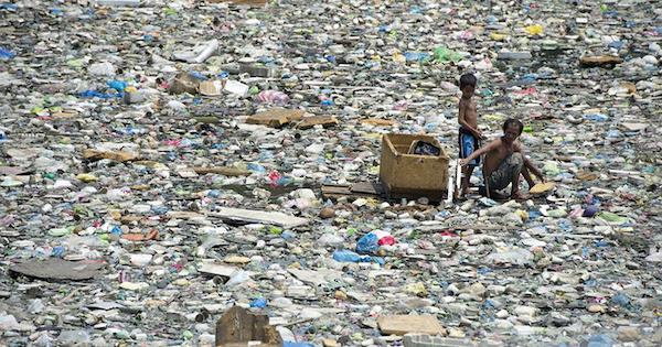 Stop dumping plastic in paradise!