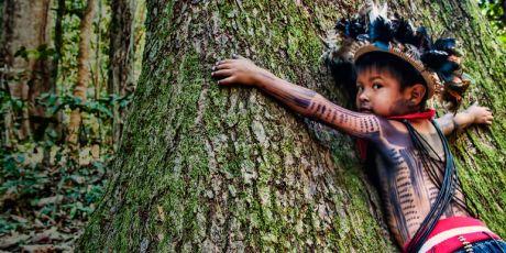 Parem de matar a Amazônia!