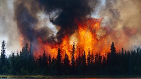 気候危機:地球を救うラスト・チャンス