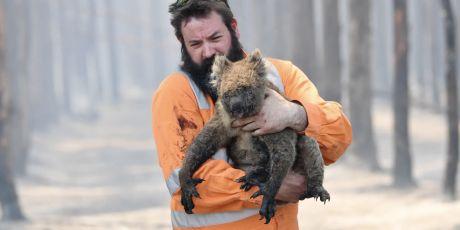 Sta op tegen de Australische apocalypse<br><br>