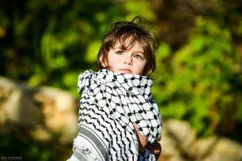 الحياة لفلسطين