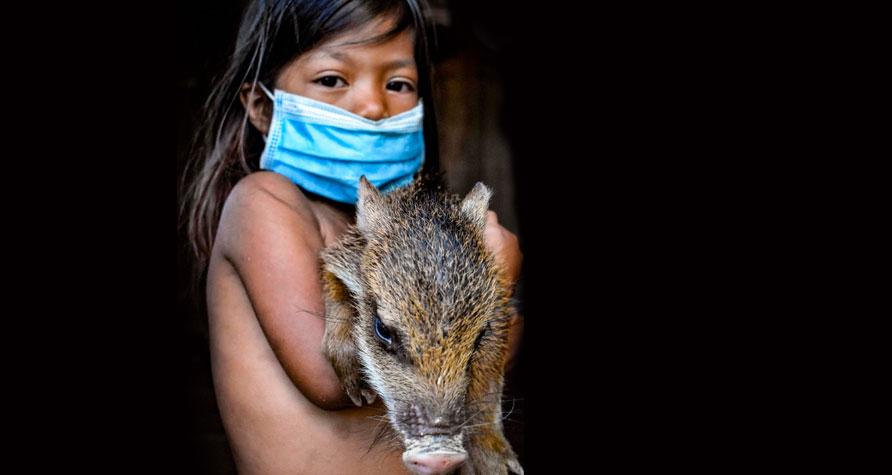 Die Rettung am Amazonas ermöglichen