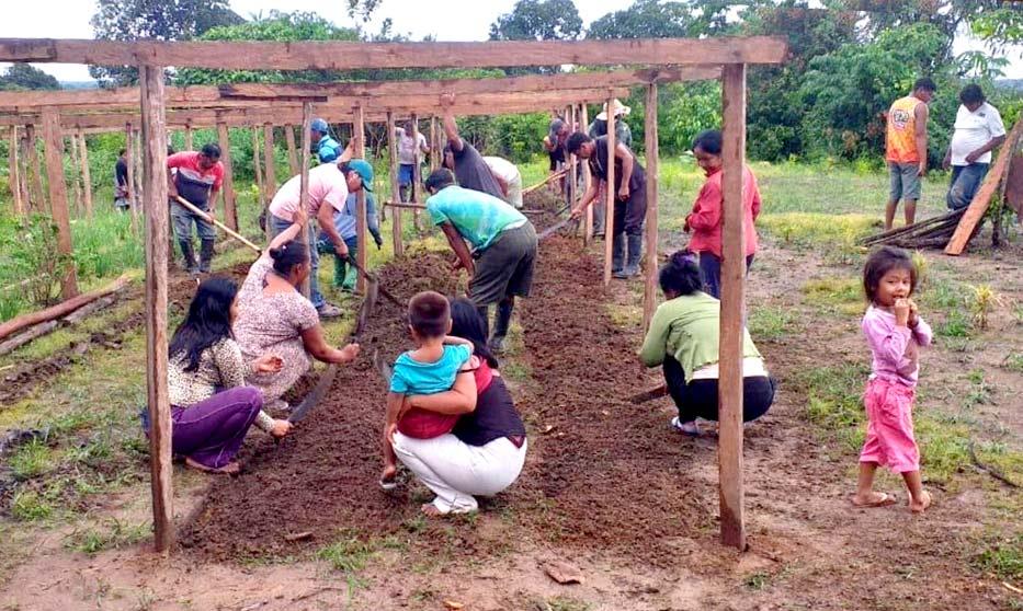 Avaaz : Nous ne pouvons pas sauver l'Amazonie sans ceux que la forêt abrite AmazonAid1