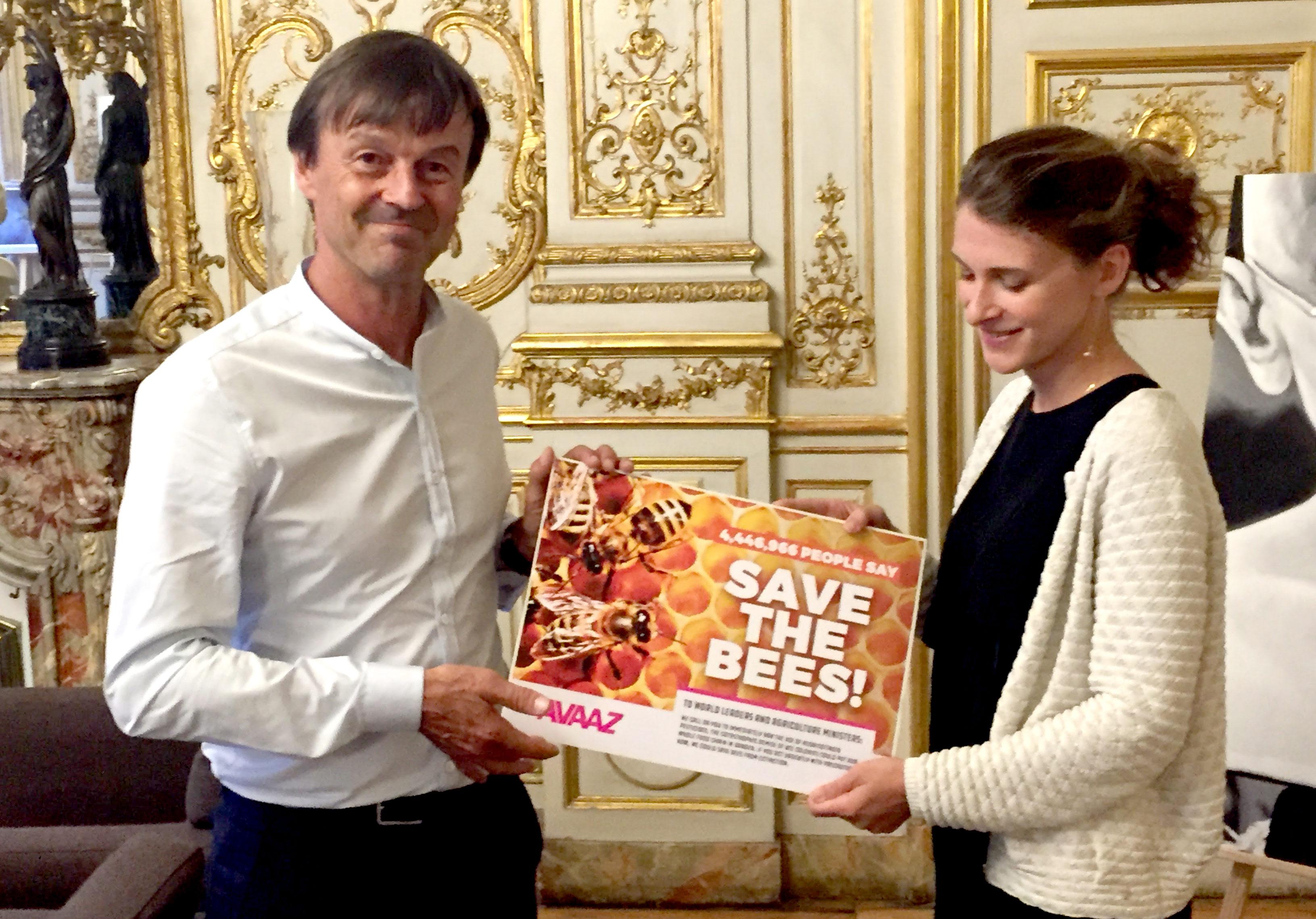 Pesticides tueurs d'abeilles : la mobilisation par pétition a porté ses fruits (communiqué de  Avaaz) MarieBees