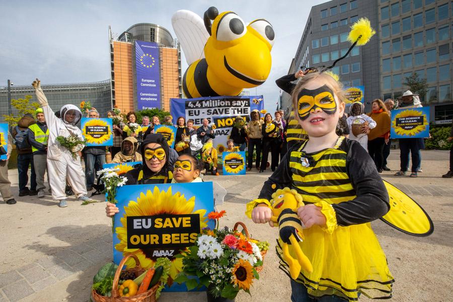 Pesticides tueurs d'abeilles : la mobilisation par pétition a porté ses fruits (communiqué de  Avaaz) RiverBeeCompress