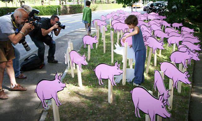 Schweinegrippe und Massentierhaltung