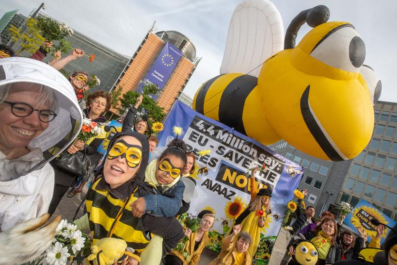 Pesticides tueurs d'abeilles : la mobilisation par pétition a porté ses fruits (communiqué de  Avaaz) Beescelebrate_rsz