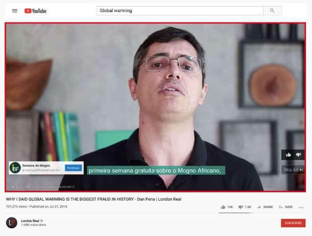 Instituto Brasileiro de Florestas's Ad